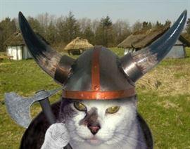 cosmo viking