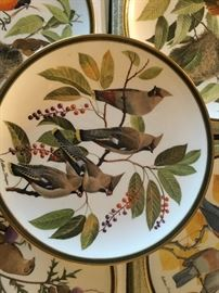 "Franklin Mint Audubon Society Porcelain Plates  "" Songbirds of the World"" 5 plates"