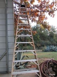 3 ladders available, Husky