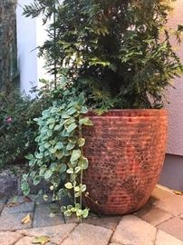 Metropolitan Plant & Flowers Quality Planters