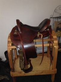 Big Horn Endurance Saddle