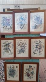 Arthur Singer Bird Prints 1-8