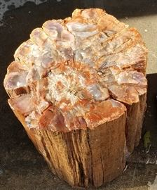 "Foot tall & 10"" diameter real petrified wood ""stump"""