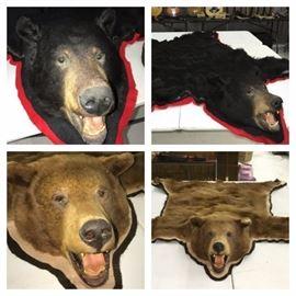 Bear 4 way