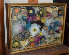 Antique bird feather collection
