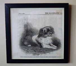 Framed Ad from June 16, 1861; Pekingese