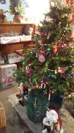 Christmas trees - several to choose from