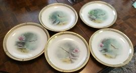 Set of Collector Plates
