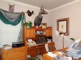 Animal Mounts and Home Office