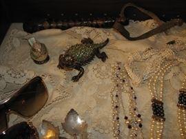 bejeweled iguana, police slapjack