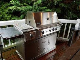 Kirkland grill