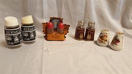 Souvenir Salt and Pepper Shakers