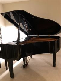 Young Chang G-157 Baby Grand Piano   -   $3000                                  Ebony Polish                                                                                      This item can be pre-sold at asking price