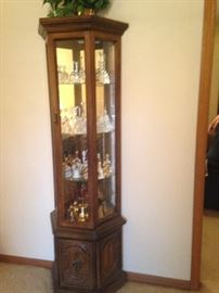 Beautiful Curio shelf with light