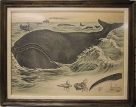 "LOT #79- VINTAGE FRAMED LITHOGRAPH OF WHALE, 37"" X 47"""