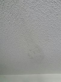 """The inside of neighbor at 2483 master bedroom.  4 stains.  Long line indicates one of many """"gashes"""" in his roof."""