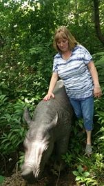Cast Metal Rhinoceros - About the size of a real baby Rhino