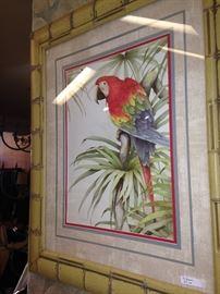 Framed parrot picture