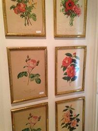 Six companion floral pictures