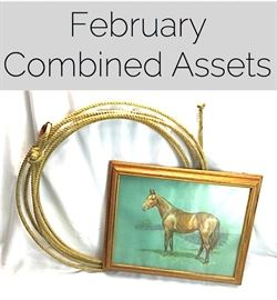 Feb. Combined Assets