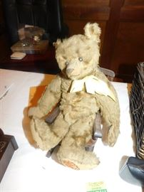 Early 1900's Steiff bear featured at the Antiques Roadshow taping here in Memphis in 2004.