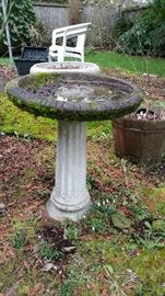 concrete birdbath with necessary moss