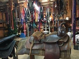 Horse Tack Shop!