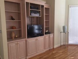 Insignia flat screen tv