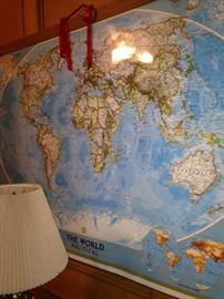 Large wall world map