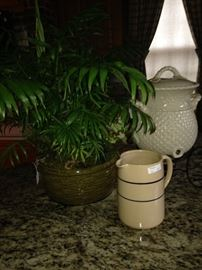 Live plant, pottery pitcher, and dispenser