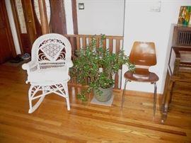 wicker / bent chair / Jade plant