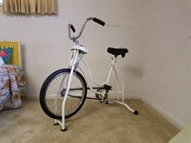Schwinn stationary bicycle