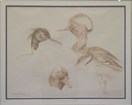 """Pastel drawing  by Norman Brumm """"Water Fowl"""""""