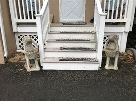 Pair dogs and more