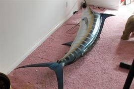 large marlin