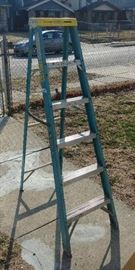 6ft Electro Master Ladder