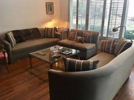 Living room sofas & coffee table