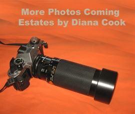 Diana Cook Estates