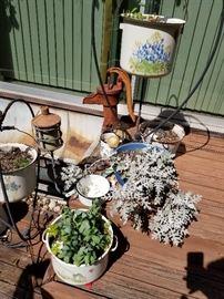Pots and plants.