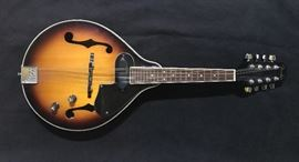 Fender electrified mandolin