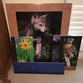 Collection of Jack Winfield Ross wildlife photo prints on foam core.