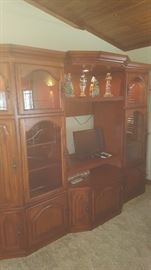 Lighted Wall Unit /Entertainment Ctr