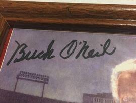 "Signed Buck O'Neil 8x10 July 28th, 1995 John ""Buck ..."