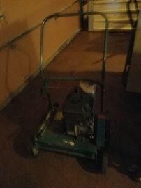 Lawn rake/thatcher