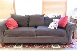 Matching sofa ( puppies not for sale!)