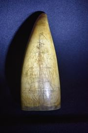 Authentic Scrimshaw 1810-1820 Sperm Whale's Tooth