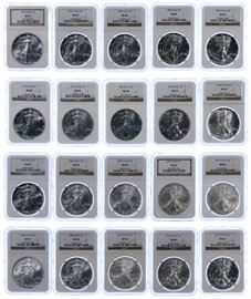 1 Silver Eagle Assortment MS 69 NGC