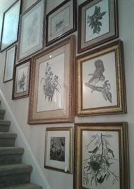 More glare issues,  but this stairwell gallery wall has stunning, well preserved signed prints and engravings, including signed and numbered C. Ford Riley's, Audubon engravings, a lovely Weisling and more!