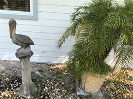 Concrete pelican and Robellini Palm