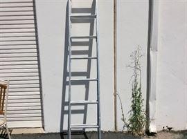 Davidson 16 Extension Ladder